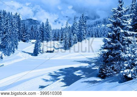 A Beautiful Winter Landscape Of Snow-covered Forest. Haute Savoy, France. Snow Park. Monochrome Phot