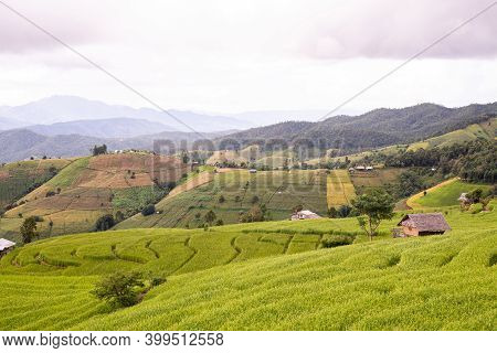 Beautiful View Scenery Of Cottage And Rice Terraces At Baan Pa Bong Piang,chiang Mai Province,thaila