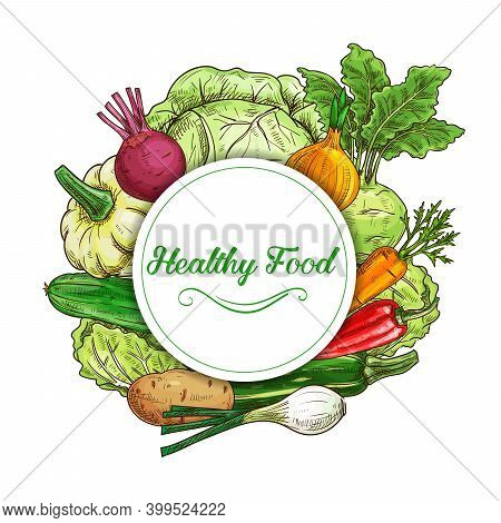Fresh Vegetables Vector Sketch Round Frame Squash, Chili Pepper And Carrot With Beetroot. Potato, On