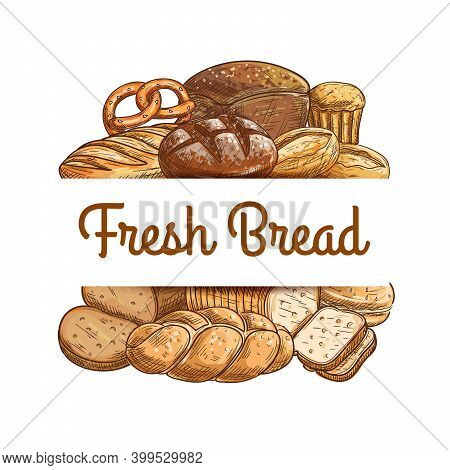 Bakery Bread And Pastry Sketch Vector. Challah Or Plait Loaf, Rye, Wheat And Sourdough Bread, Salted