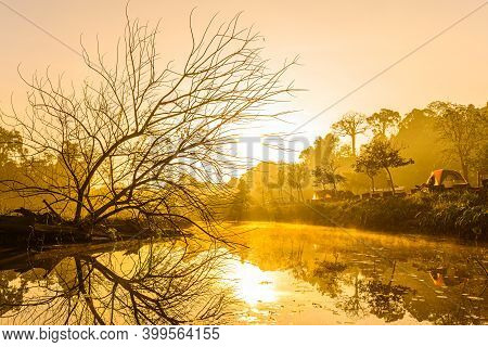 Landscape View In Morning Time With Tree Branch Over Foggy River In Sunrise At Khao Yai Forest, Thai