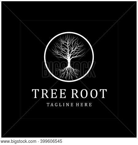 Dry Dead Oak Maple Banyan Cedar Tree Silhouette Illustration Logo Design