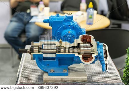 Cross Section Present Detail In Side Of High Pressure External Gear Pump Or Rotary Gear Pump For Ind