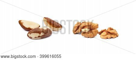 Healty Para Nuts And Walnuts Isolated On White Background