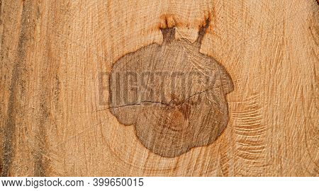 Natural Wood Texture. Cut Of Wood. Felled Trees In Forest. Background Of Felled Tree. Close-up.