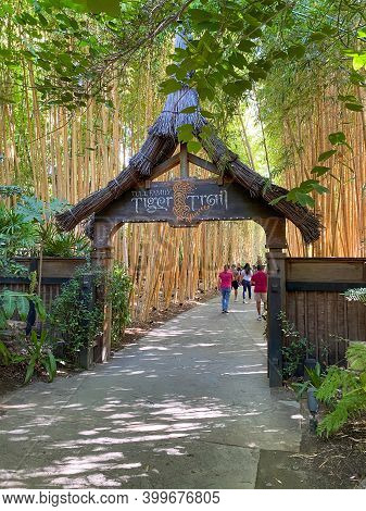 San Diego Safari Park Zoo In San Diego, One Of The Largest Tourist Attractions In San Diego County.