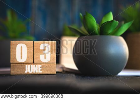June 3rd. Day 3 Of Month, Cube Calendar With Date And Pot With Succulent Placed On Table At Home Sim