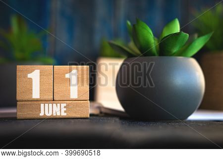June 11th. Day 11 Of Month, Cube Calendar With Date And Pot With Succulent Placed On Table At Home S
