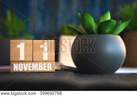 November 11th. Day 11 Of Month, Cube Calendar With Date And Pot With Succulent Placed On Table At Ho