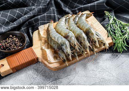 Fresh Raw Giant Langoustine Shrimp . Gray Background. Top View.