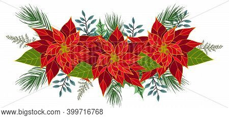 Christmas Poinsettia Flowers With Green Leaves And Twigs