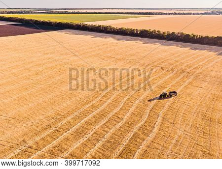 Harvester Machine Working In Field . Combine Harvester Agriculture Machine Harvesting Golden Ripe Wh