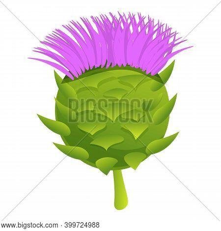 Healthy Artichoke Icon. Cartoon Of Healthy Artichoke Vector Icon For Web Design Isolated On White Ba
