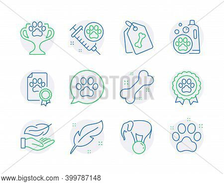 Animals Icons Set. Included Icon As Dog Competition, Pets Care, Pet Tags Signs. Lightweight, Feather