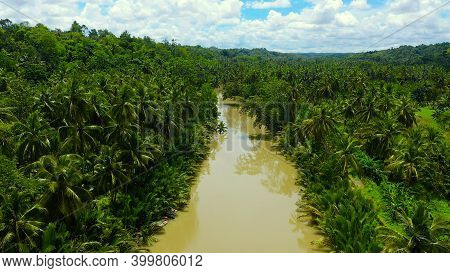 River In The Rainforest In A Mountain Canyon. River In The Green Jungle. Bohol, Philippines.