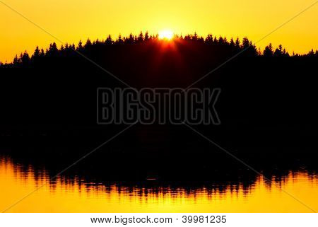 Red sunset and trees silhouette over the forest lake