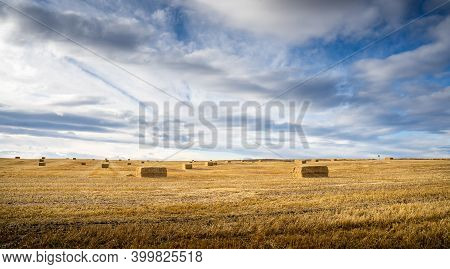 Square Hay Bales Lying In A Harvested Field On The Canadian Prairies Under A Dramatic Sky In Rocky V