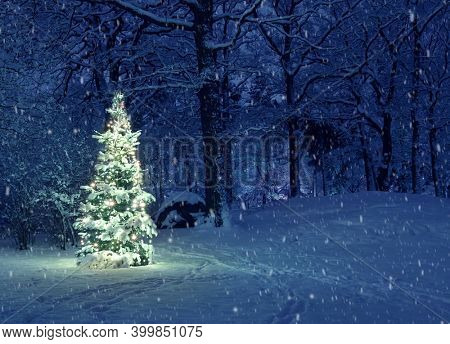 Christmas Tree in forest Snowing