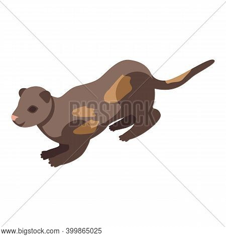 Fur Mink Icon. Isometric Of Fur Mink Vector Icon For Web Design Isolated On White Background