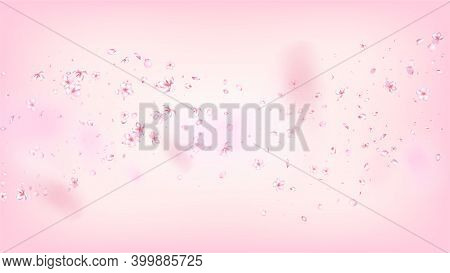 Nice Sakura Blossom Isolated Vector. Spring Falling 3d Petals Wedding Paper. Japanese Blurred Flower