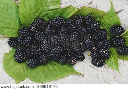 Fresh Ripe Blackberries Close-up. Blackberry Texture. Healthy Summer Berries. Healthy Vegetarian Foo