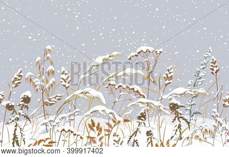 Seamless Horizontal Border With Winter Snow Covered Meadow Plants. Wild Herbs And Cereals Under Snow
