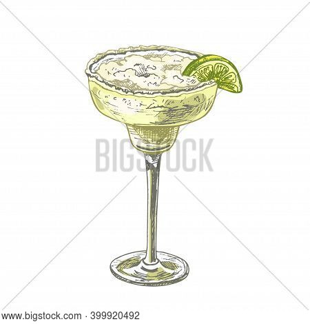 Alcohol Classics Cocktail Margarita Glass. Vector Vintage Hatching Color Illustration. Isolated On W
