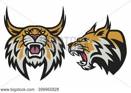 Bobcat Lynx Wildcat Angry Roaring Logo Esports Sports Mascot Vector Illustration Set Premium Pack Co