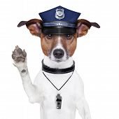 police dog asking to stop with cap poster