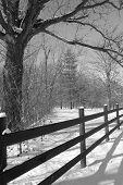 Rural farm land west of Louisburg KS. Fence with fresh snow taken in Jan. 2007 poster
