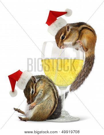 Funny drunk santas chipmunks dress santa hat with champagne glass. poster