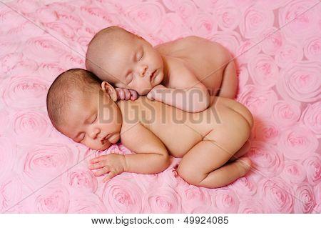 Sleeping Fraternal Twin Newborn Baby Sisters