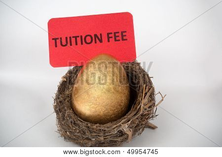 Tuition Fee Concept