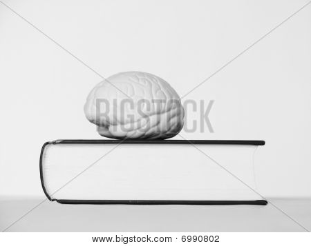Brain On Closed Book