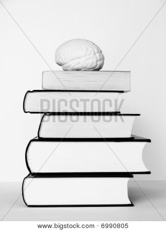 Brain On The Tower Of Books