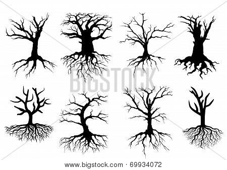 Black bare tree silhouettes with roots isolated over white background, suitable for eco and environment design poster