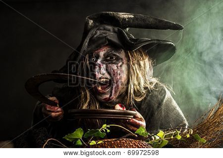 Witch In The Fog