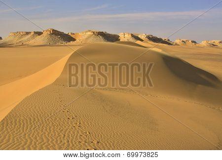 Sand dunes in Lybian desert,Egypt