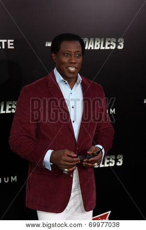 LOS ANGELES - AUG 11:  Wesley Snipes at the