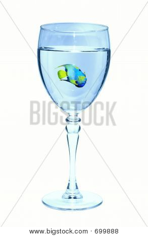 Fish in a Wine Glass poster