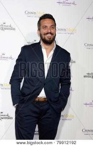 LOS ANGELES - JAN 8:  Fabio Vivani at the Hallmark TCA Party at a Tournament House on January 8, 2014 in Pasadena, CA