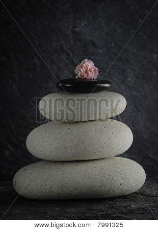 zen stones and pink rose