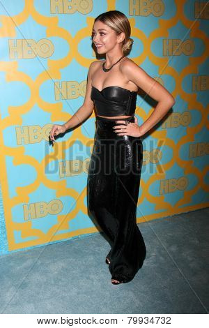 LOS ANGELES - JAN 11:  Sarah Hyland at the HBO Post Golden Globe Party at a Circa 55, Beverly Hilton Hotel on January 11, 2015 in Beverly Hills, CA