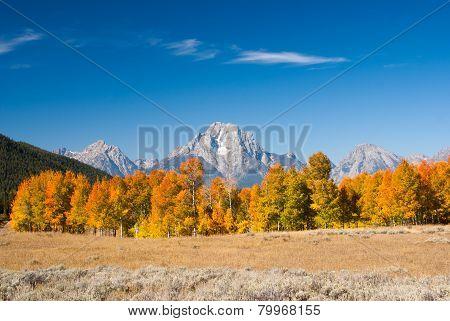 Autumn In Grand Tetons