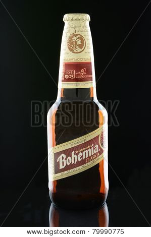 Bohemia Beer On Black