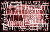 Mixed Martial Arts MMA as a Fighting Style poster