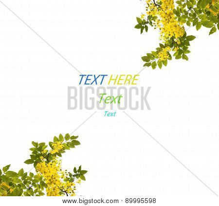 Green Leaf And Yellow Flower