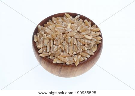 Khorasan Wheat, Kamut, A Varity Of An Old Ancient Grain