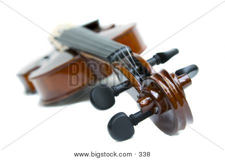 Violin From Scroll End