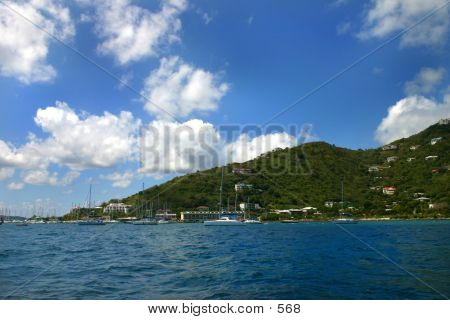 Tropical Harbor
